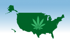 Does Federal Guidance Ease Hemp Banking Issues